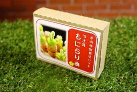 【多肉植物】うさ耳 モニラリア 栽培セットミニ プレゼント 贈答 ラッキーシール対応 簡単育成 うさぎ ラビット 種 可愛い 送料無料 観葉植物 サボテン おしゃれ 簡単 父の日 育成セット 栽培キット