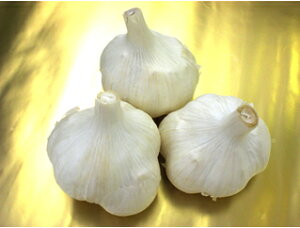 【予約販売】にんにく種ホワイト六片 国産 1kg 栽培用