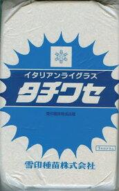 ※代金引換不可※イタリアンライグラス タチワセ 20kg (1kg 20袋) 【雪印種苗】 [牧草種子]