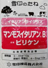 イタリアンライグラス種 マンモスB (1kg) 【雪印種苗】 [牧草種子]