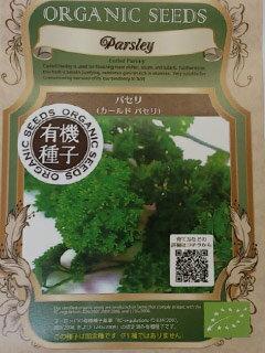 有機種子 【ハーブの種】 カールドパセリ 0.60g