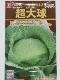キャベツ種子超大球 (1ml) 男の野菜 〜巨大野菜〜きゃべつ 甘藍