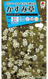 かすみ草種コベントガーデン (1.8ml) タキイ