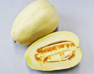 【自然栽培の種】まくわうり (12粒) [栽培用 種子 果菜 真桑ウリ]