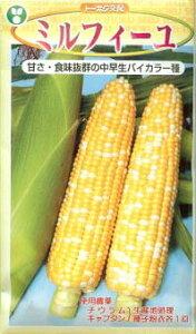 トウモロコシ種 F1 ミルフィーユ(2000粒)[栽培用 種子 とうもろこし 玉蜀黍 スイートコーン 生産者向け]