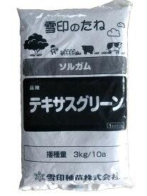 【春蒔き】ソルゴー種 テキサスグリーン(旧:普通種) (1kg)[ソルゴー ソルガム コモン 牧草種子]