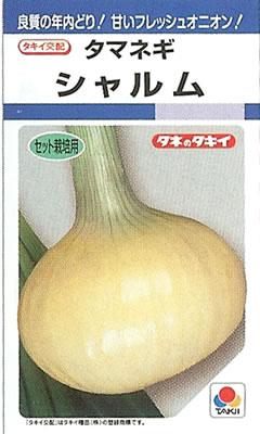 タマネギ種シャルム (6ml)たまねぎ 玉ねぎ 玉ネギ 玉葱 セット栽培用 年内どり