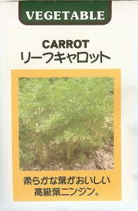 ニンジン種世界の野菜種 リーフキャロット(15ml)にんじん 人参