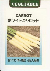 ニンジン種世界の野菜種 ホワイトキャロット(0.2ml)にんじん 人参