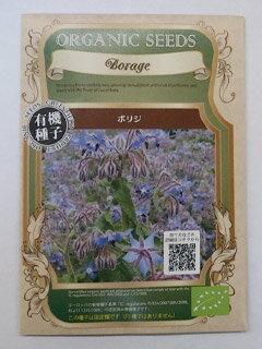 有機種子 【ハーブの種子】 ボリジ 0.6g