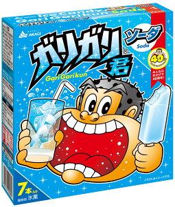 アイスクリーム ガリガリ君 ソーダ(マルチ) (63mlx7本)×7個入り 赤城乳業