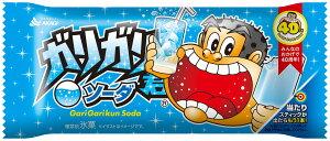 アイスクリーム ガリガリ君ソーダ 105ml×32本+1本おまけつき 赤城乳業