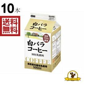 【冷蔵】大山 白バラ コーヒー 500mlx10本