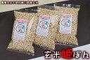 玄米姫ぽん 80gX3袋 香川県産自然栽培米玄米と沖縄黒糖で栄養価も高くミネラルたっぷり無添加お菓子 「黒糖タイプ…
