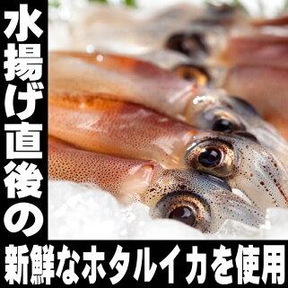 バレンタインほたるいか2種食べ比べセット日本酒ビール珍味おつまみ極めるセット訳あり富山ホタルイカ蛍烏賊