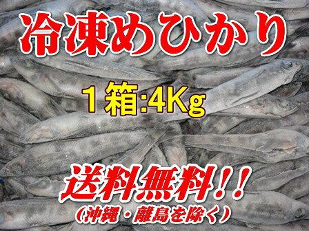 徳用バラ冷凍メヒカリ(1箱4kg:1尾あたり32-35g前後)【目光・めひかり】【北海道・本州・四国・九州は送料無料】【徳用】