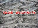 徳用バラ冷凍メヒカリ(1箱4kg:1尾あたり32-35g前後)【目光・めひかり】【北海道・本州・四国・九州は送料無料】【…