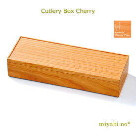 越前塗 カトラリーボックス チェリー 26×9×5.2cm日本製 木製 ナチュラル カトラリーケース 箸 スプーン フォーク ナイフ ケース スタッキングケース テーブルウェア