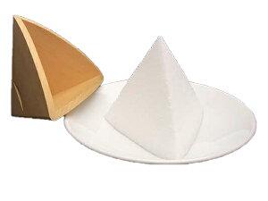 盛り塩 盛り塩固め器 三角錐 大大