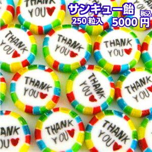 【賞味期限3月末のため】『サンキュー飴』 メガ盛り 250粒入 ギフト プレゼント 飴 お菓子 ありがとう ありがとう飴 あめ アメ りんご風味 キャンディ 個包装 御礼 感謝 お礼 挨拶 大量 退職