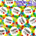 『サンキュー飴』 メガ盛り 250粒入 ギフト飴 お菓子 サンキュー ありがとう ありがとう飴 あめ アメ りんご風味 個包装 クリスマス 御…