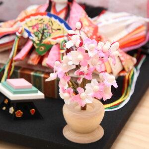 豆丸紋桜市松屏風親王飾14
