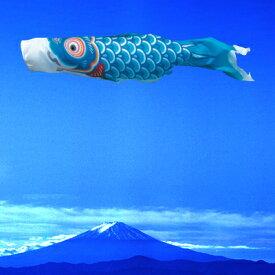 こいのぼり 単品 徳永鯉のぼり 友禅鯉 0.6m口金付