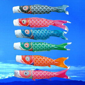 こいのぼり 単品 徳永鯉のぼり 友禅鯉 1.0m口金付