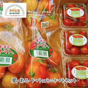 【送料無料】愛・ある・トマト×ミニトマトセット 野菜ギフト 大玉トマト約2kg 10〜16玉 ミニトマト約150g×3パック 常温 大容量 とまと 甘味 酸味 うま味 加熱可 レシピカード付 デ・リーフデ