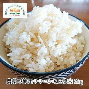 【送料無料】ササニシキ胚芽米 2kg 農薬不使用 宮城 有機ささにしき 石巻 豊かな風味 独特な甘み お取り寄せ 田伝むし