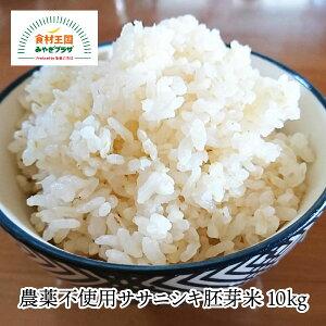 【送料無料】ササニシキ胚芽米 10kg 農薬不使用 宮城 ささにしき 化学肥料不使用 石巻 豊かな風味 独特な甘み お取り寄せ 田伝むし