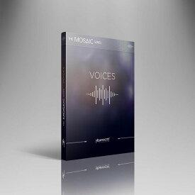 HEAVYOCITY/MOSAIC VOICES【オンライン納品】【在庫あり】