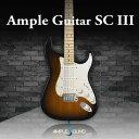 AMPLE SOUND/AMPLE GUITAR F II【オンライン納品】【在庫あり】