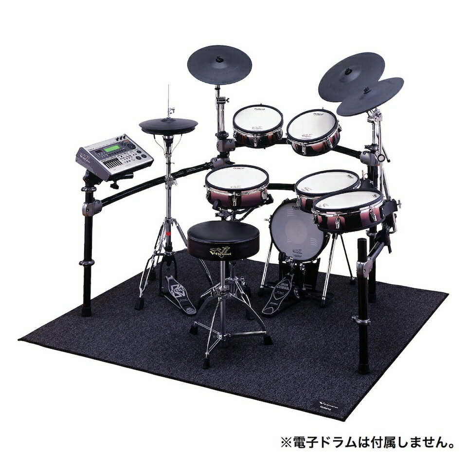 Roland/TDM-20