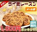 メール便で送料無料!!【1000円ポッキリ】ライ麦レーズン☆★