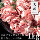 Imgrc0071066298