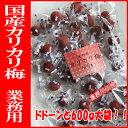 業務用 カリカリ梅 国内産 ドドーンと600g 【P20Aug16】
