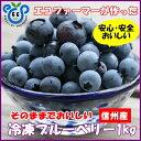信州産【そのままでおいしい】生食用冷凍ブルーベリー1kg【P20Aug16】
