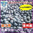 信州産【加工用】冷凍ブルーベリー1kg【P20Aug16】