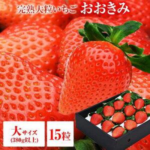 【順次発送中】送料無料 大サイズ 15粒 380g以上(1粒あたり23〜29g) いちご イチゴ 苺 大粒 高級 大きくて甘い おおきみ タルト ショートケーキ の材料にも フルーツ 果物 あまおう とちおとめ