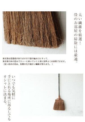 ≪送料無料≫鬼毛棕櫚ほうき長柄箒棕櫚箒しゅろほうきほうき9玉おしゃれ