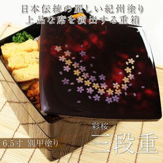 ≪≫紀州塗6.5寸胴張三段重箱別甲彩桜