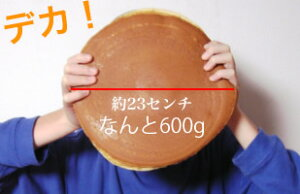 【送料無料】札幌デカどら焼きなんと600g栗入りどら焼き/特大/誕生日/父の日