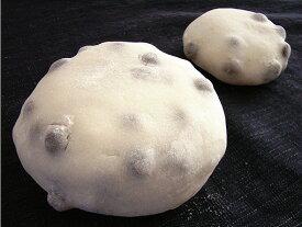 MEGA大福(豆)1個
