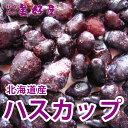家族みんなの元気をお手伝い 北海道産 ハスカップ(冷凍 1kg)