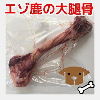 犬用エゾ鹿肉 生の大腿骨