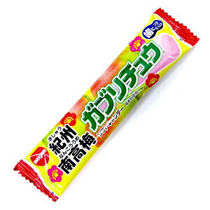 ガブリチュウ 紀州 南高梅 ソフトキャンディー【明治チューインガム】20個入り×1BOX