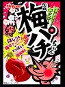 【特価】梅パチちゃん パチパチはじけるキャンディー20個入 明治産業【駄菓子】