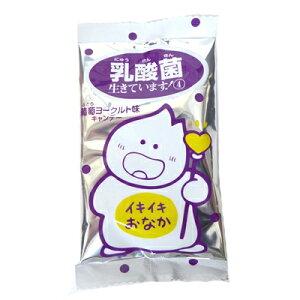 【特価】乳酸菌生きてます!葡萄ヨーグルト味キャンデー【キッコー製菓】30袋入り1パック 中国でも人気!