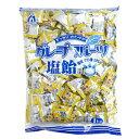 【業務用】1キロ グレープフルーツ 塩飴 桃太郎製菓 1kg個装タイプ 熱中症対策に